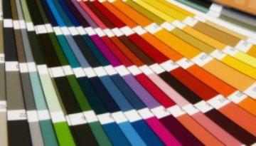 Colour Palette Design Jimmy Hornet